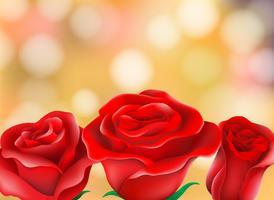 Rosas vermelhas lindas desfocagem o fundo vetor