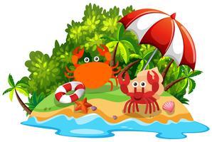 Dois, caranguejos, ilha vetor