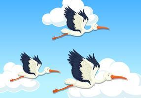 Garça voando no céu