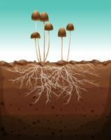 Cogumelo fresco crescendo em terra vetor
