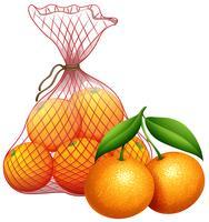 Um saco de tangerina vetor