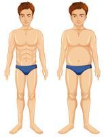 Um conjunto de transformação do corpo do homem vetor