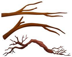 Um, jogo, de, filial árvore vetor