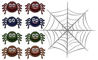 Aranhas e web em fundo branco vetor