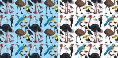 Plano de fundo sem emenda com aves selvagens vetor