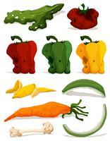 Diferentes tipos de vegetais podres vetor