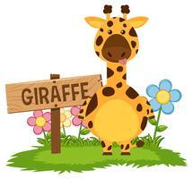 Girafa fofa no jardim vetor
