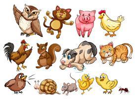 Tipo diferente de animal de fazenda e animal de estimação vetor