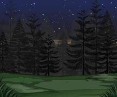 Uma noite escura de floresta de mistério