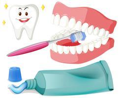 Escovar os dentes com pincel e cole vetor