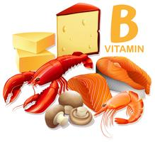 Um conjunto de vitamina B Food vetor