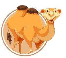 Um camelo no modelo de etiqueta vetor