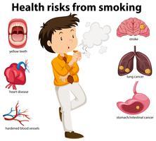 Um cartaz de educação de fumar e saúde vetor