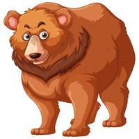 Urso pardo com pêlo castanho vetor