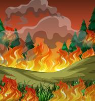 Fundo de incêndio florestal perigoso vetor