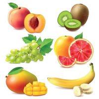frutas realistas definir ilustração vetorial vetor
