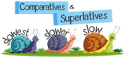 Palavras inglesas comparativas e superlativas vetor