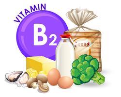 Um conjunto de vitamina B2 comida vetor