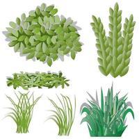 ilustração de grama e arbustos vetor