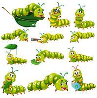 Personagem de lagarta verde em diferentes ações vetor