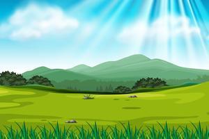 Cena de fundo com campo verde vetor