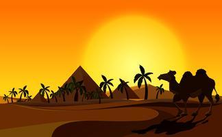 Pirâmide e camelo com cena do deserto vetor