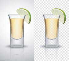 gin tônica ou vodka lima vetor