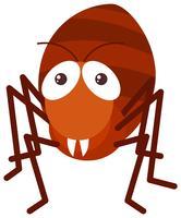 Formiga vermelha em fundo branco vetor