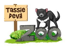 Diabo da Tasmânia no zoológico vetor