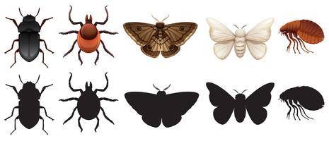 Conjunto de insetos e silhuetas vetor