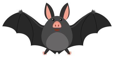Morcego feliz no fundo branco vetor