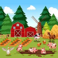 Animais de fazenda feliz rural