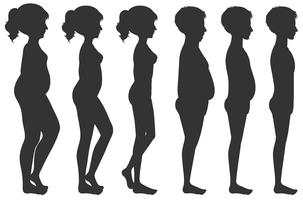 Transformação do corpo masculino e feminino vetor