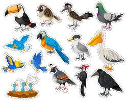 Adesivo definido com muitos tipos de pássaros vetor
