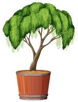 Uma plantação de árvores no pote vetor