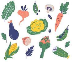 conjunto de vegetais. alimentos orgânicos e saudáveis. vetor
