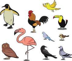 pinguim frango pardal dodo pássaro pombo pato cisne coruja corvo. vetor