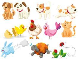 Diferentes tipos de animais domésticos vetor