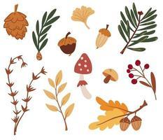 conjunto de elementos da floresta. folhas de outono, cones, frutos vetor