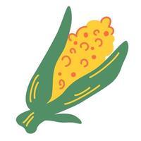 milho. doce sabugo de milho orgânico. vetor