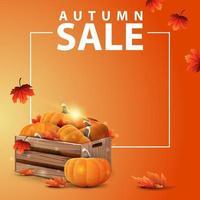 banner web quadrado outono com caixas de madeira de abóboras maduras vetor