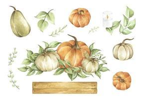 conjunto de abóboras em aquarela. decoração de outono design floral. vetor