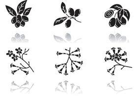 conjunto de ícones de glifo preto de sombra projetada da flora brasileira vetor