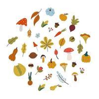 folhas de outono, cogumelos, vegetais em estilo simples vetor
