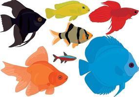 ilustração em vetor aquário coleção de peixes tropicais coloridos