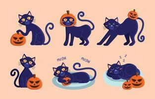 personagem de halloween gato preto vetor