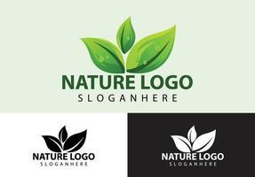 conceito de logotipo da natureza da folha vetor
