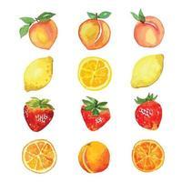 aquarela de frutas mistas, pêssego, laranja, morango, vetor de limão