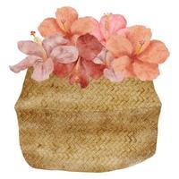 ilustração em aquarela de hibisco tropical em uma cesta vetor