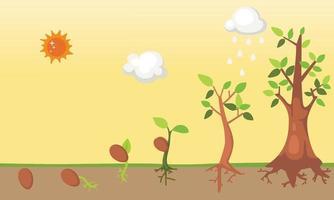 vetor do ciclo de vida da árvore